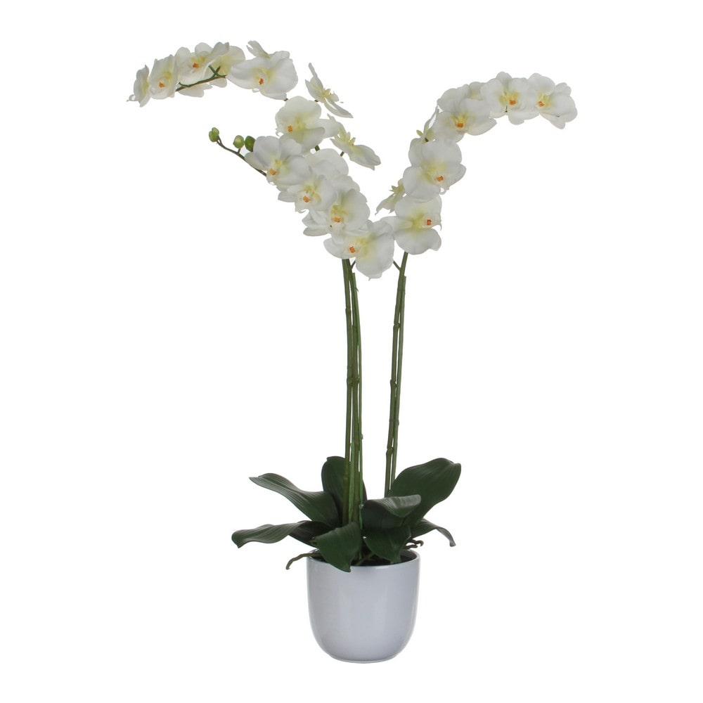 Sier Orchidee Phalaenopsis groen/wit 100cm hoog