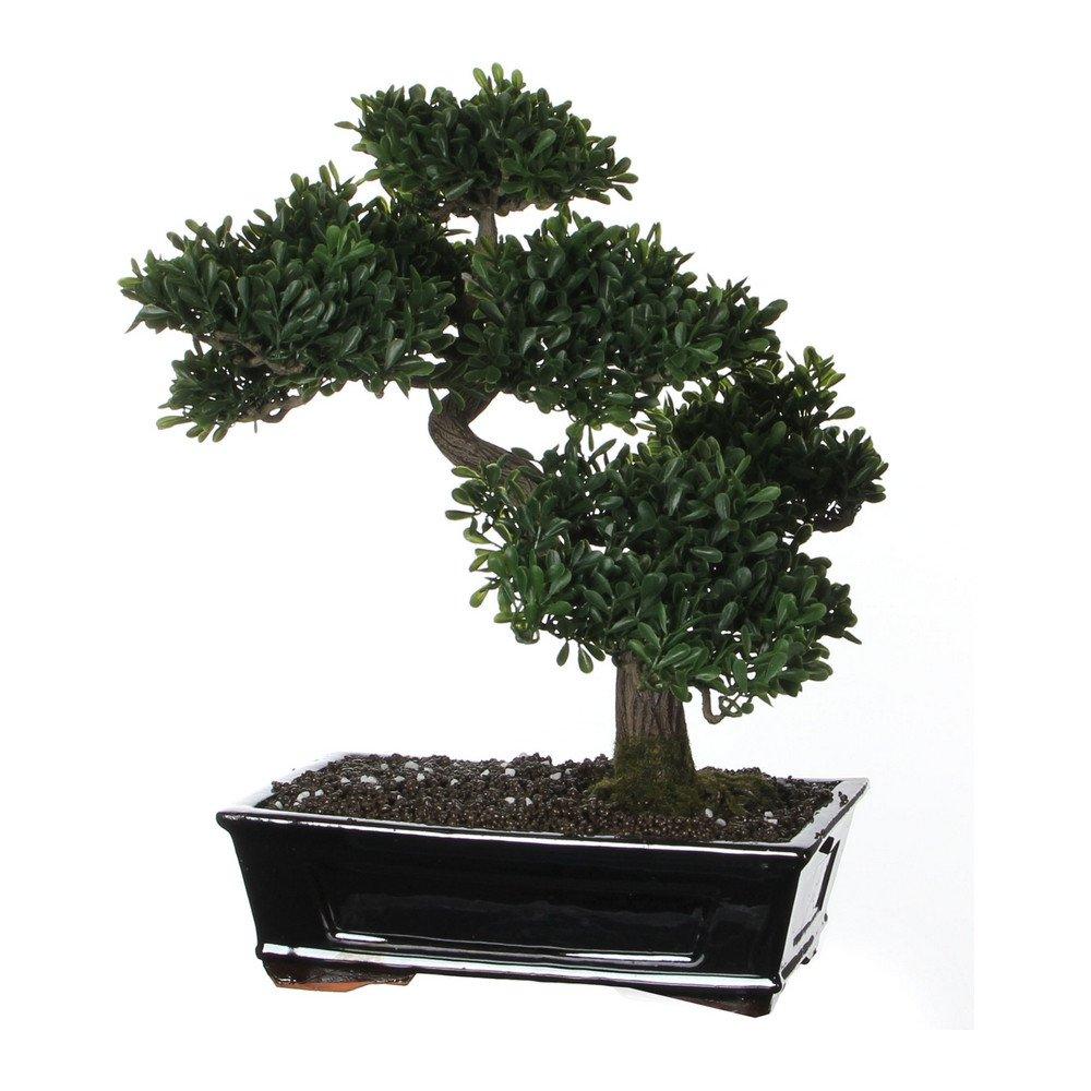 Sier bonsai theeblad 40cm hoog