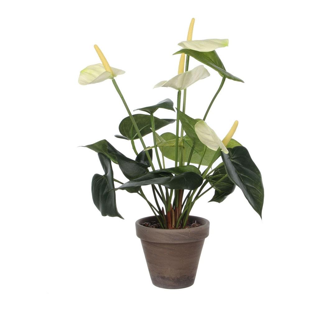 Sier Anthurium met grijze pot 40cm hoog